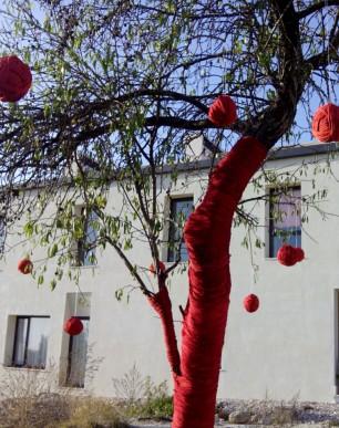 PALMA 0 IMG_3531_arbol Navidad --V